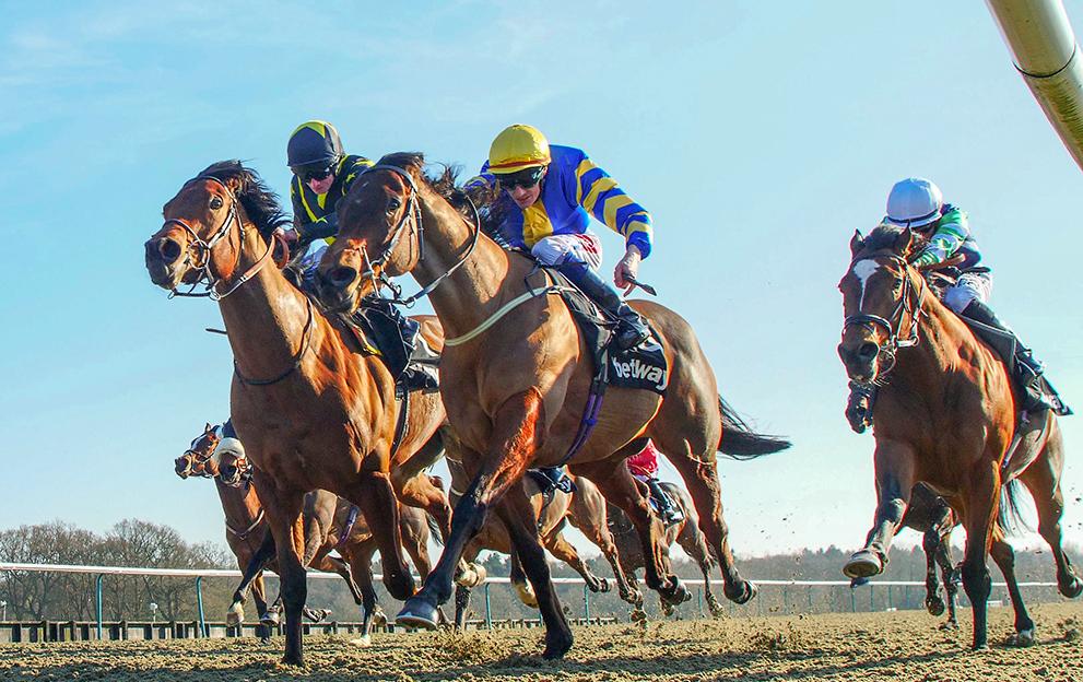 Lingfield-racecourse