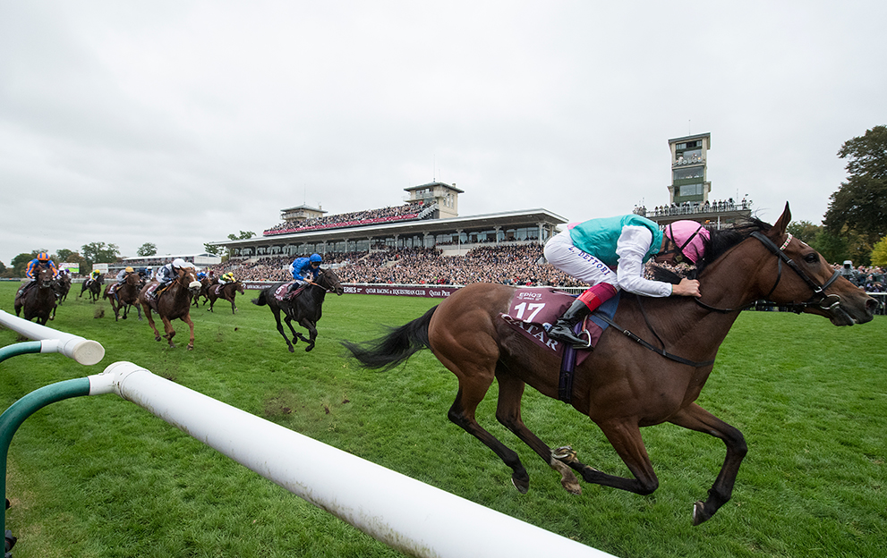 Chantilly-Racecourse---Enable-winning
