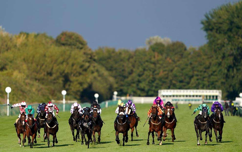 Horse racing betting optional claimer