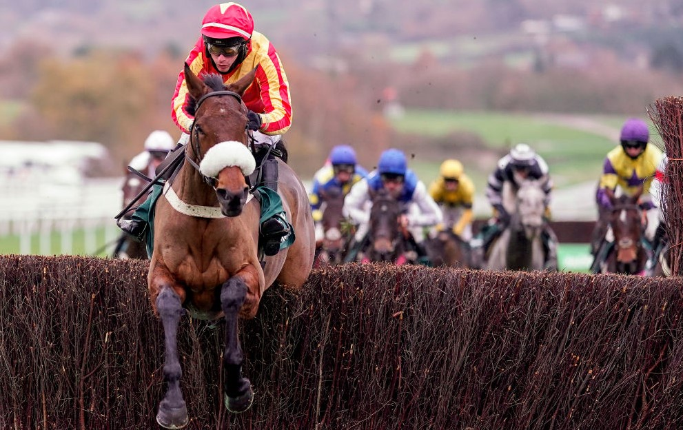 Coole Cody Paddy Power Gold Cup Cheltenham