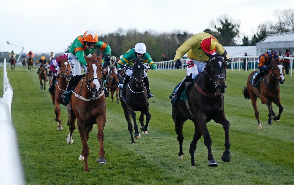 National Hunt race fences bumper
