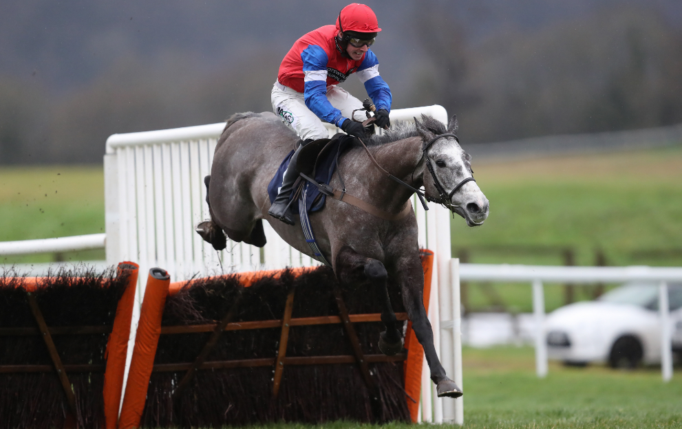 Horse racing fences and hurdles height