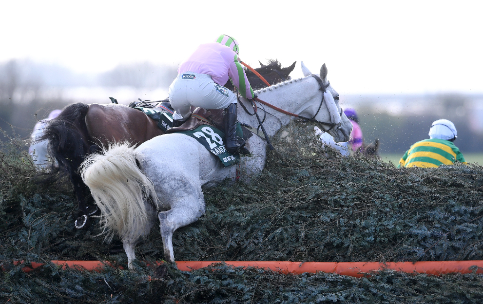 Grand National fence heights