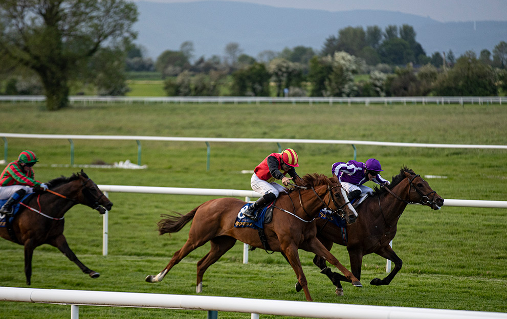 Tipperary racecourse Flat races -