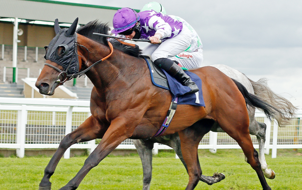 Betting on horse racing with Paddy Power
