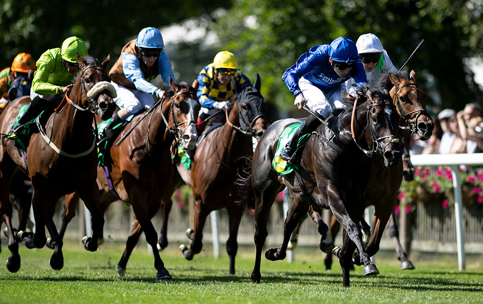 Newmarket-July-Course-racing